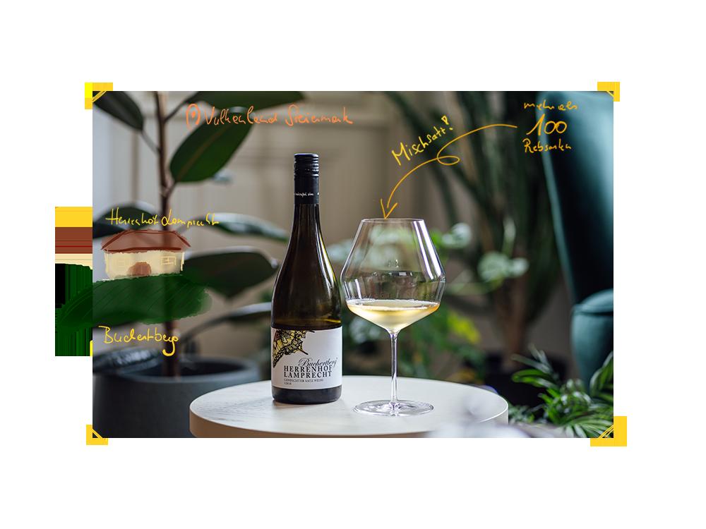 Bild einer Flasche Buchertberg Weiss 2018 vom Herrenhof Lamprecht.